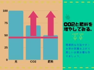 とある水槽のグラフ3