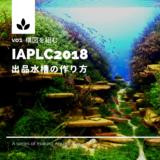 【IAPLC2018】世界水草レイアウトコンテスト 出品水槽の作り方 vol1 構図を組む