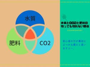 水質とCO2と肥料の関係