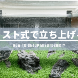 【水草水槽の立ち上げ】「ミスト式」で立ち上げる方法 ーメリット、デメリットを詳しく解説ー