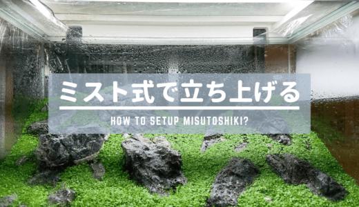 【水草水槽の立ち上げ】ミスト式で立ち上げる方法
