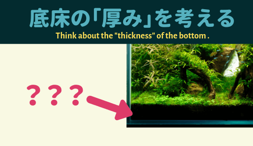 【水草水槽】底床の「厚み」を考える ーレイアウトと水草育成、2つの視点からアプローチー