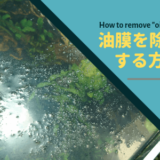 【水草水槽】油膜対策 を詳しく解説 ー3つの方法をご紹介ー