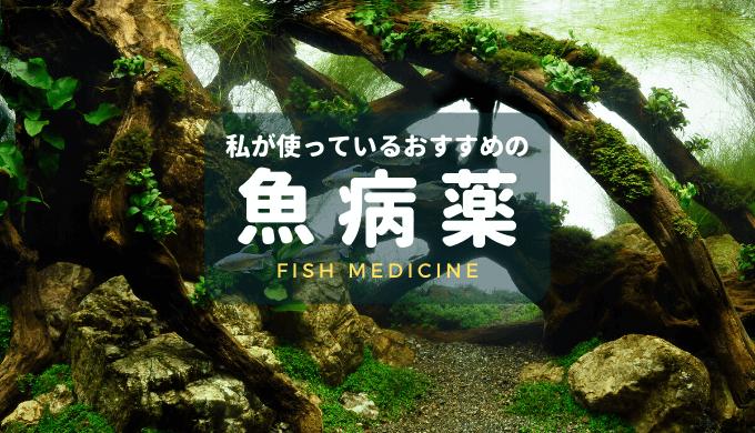 魚病薬まとめ