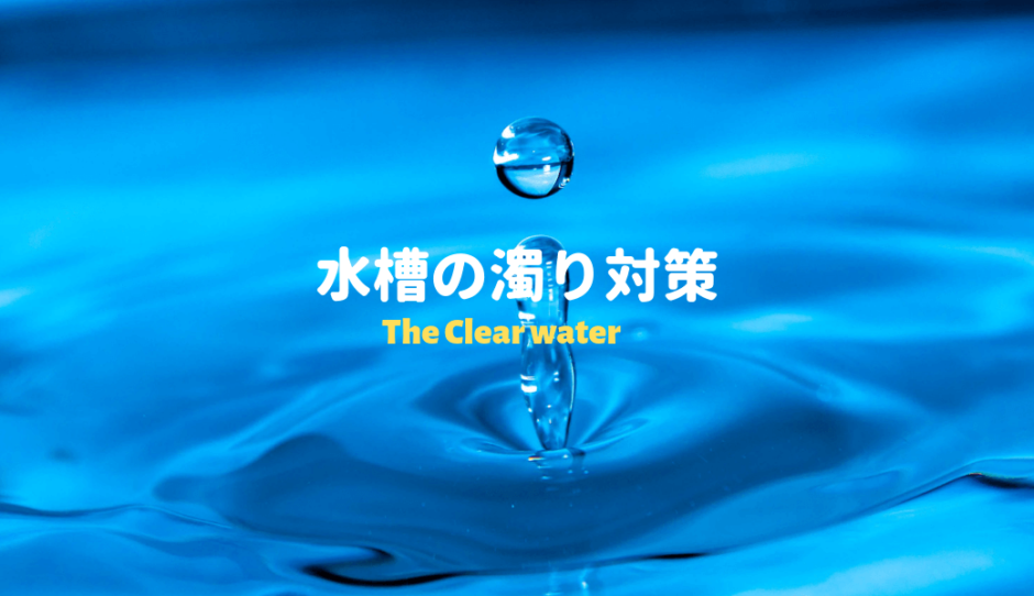水槽の濁り対策