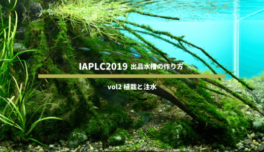 IAPLC2019出品水槽