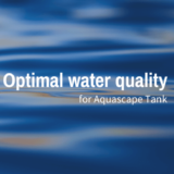 Optimal water quality for Aquascape Tank