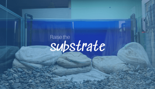 Raise the substrate