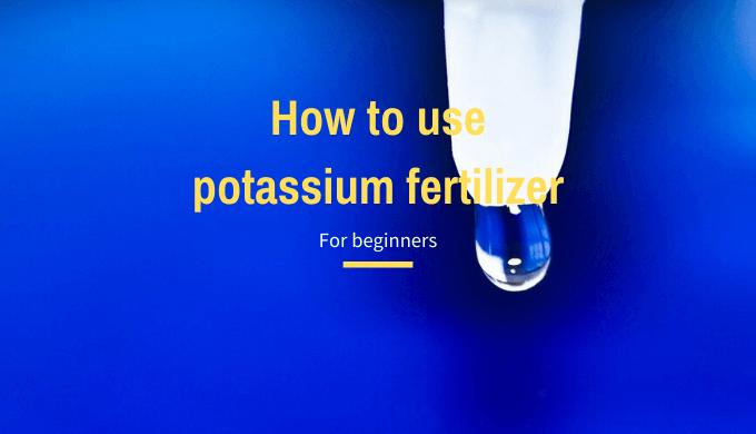 How to use potassium fertilizer