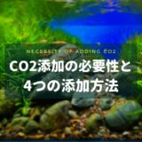 CO2添加の必要性と4つの添加方法