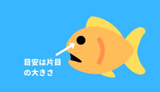 【お魚に餌を与える方法】与える量、回数、バランスの目安