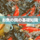 熱帯魚の餌の基礎知識
