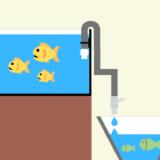 【点滴法】お魚の水合わせ ー方法、時間、点滴スピードなどを詳しく解説ー