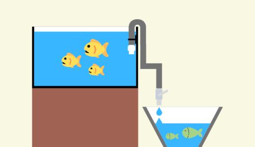 負担の少ないお魚の水合わせをマスター! セット方法、水合わせの時間、点滴スピードなどを詳しく解説