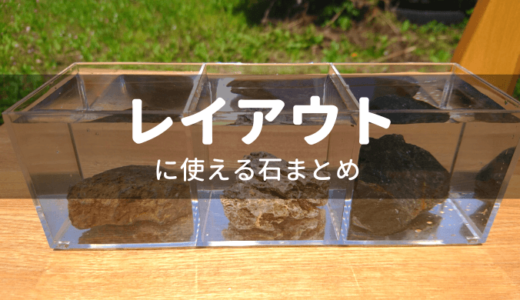【水草レイアウター必見】水槽に使える石まとめ