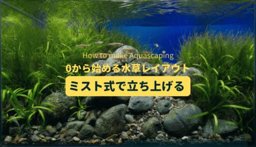 水草レイアウトをミスト式で立ち上げる:流木の配置、水草の植え込み、ミスト式管理のコツ