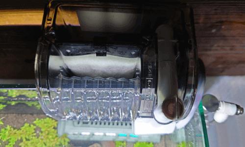フィルター、ヒーターの電源を入れ水を足す