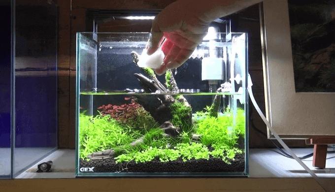 スポンジを水に浸す