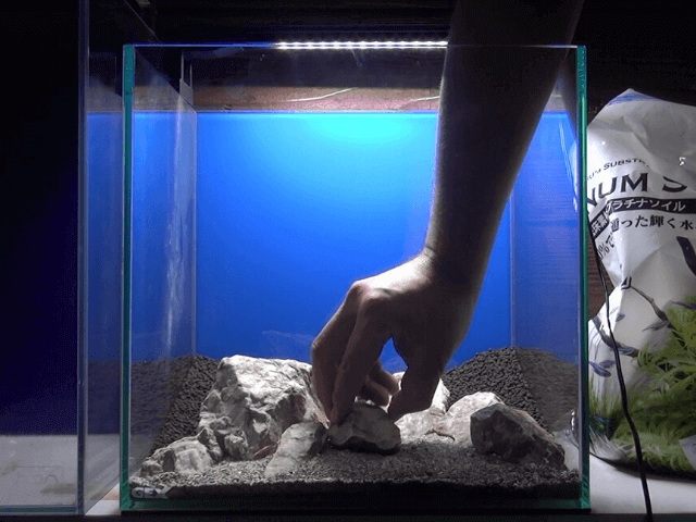 石を配置する