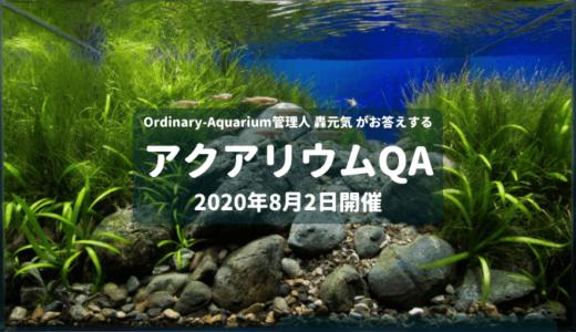 2020年8月2日開催 アクアリウムQA