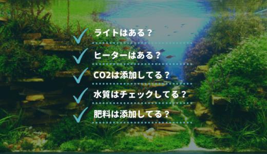 【30秒診断】水草が育たない原因を簡単チェック!