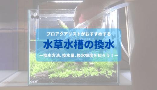 【基本メンテナンス】水草水槽の水換え ー換水方法、換水量、換水頻度などを分かりやすく解説ー