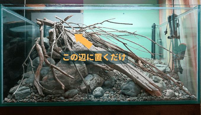 オープンアクアリウムの骨格